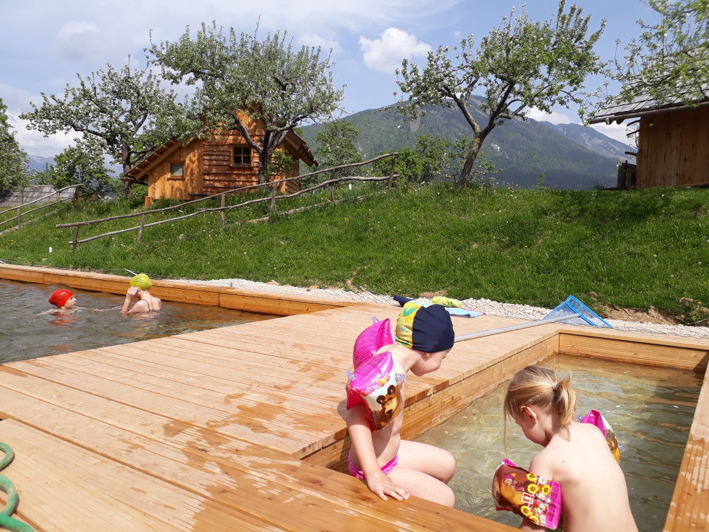 Swimming pool with one part forsmall children, no chemical needed!!